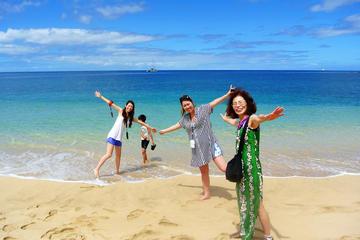 プライベート ツアー:オアフ島で完璧な1日をカスタマイズ