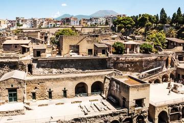 Recorrido de medio día privado a las ruinas de Herculano