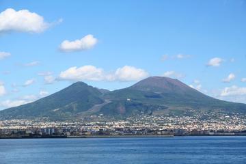 Tour privato di un giorno a Pompei e al monte Vesuvio con visita a