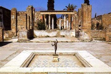 Visite privée d'une demi-journée des ruines de Pompéi