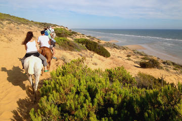 Donana National Park Horse or 4x4 Riding Day Trip