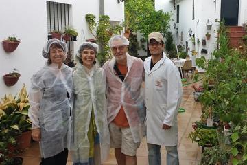 Excursión de degustación de jamón...