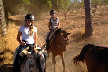 Excursion à cheval au départ de Séville