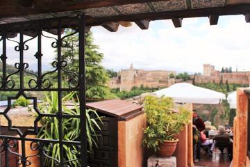 Excursion d'une journée à Granada au départ de Séville