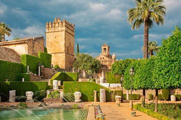 Traslado privado de Sevilla a Granada...
