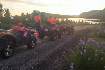 Midnight Sun ATV Quad Tour from...