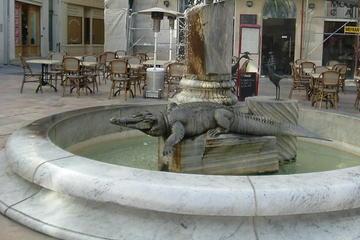 Visite guidée de Nîmes, la ville...