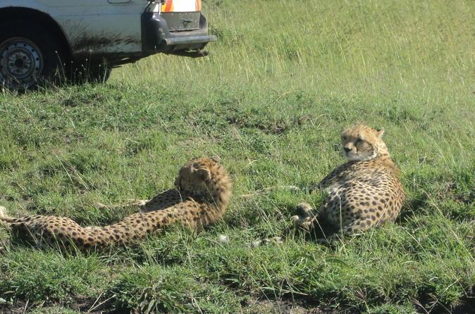 Nairobi National Park  Tour Kenya, Africa