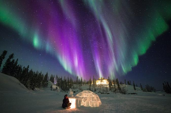 Northern Lights Trip from Reykjavik by Coach