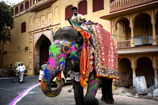 Guided Jaipur City Tour including Amber Fort