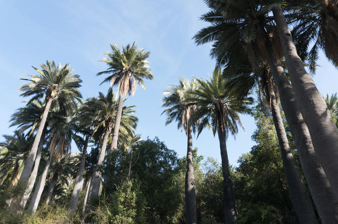 La Campana National Park Guided Full Day Tour