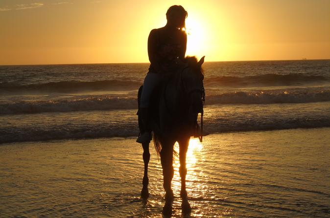 Agadir Horse Riding Paradise Valley and Taghazout Beach