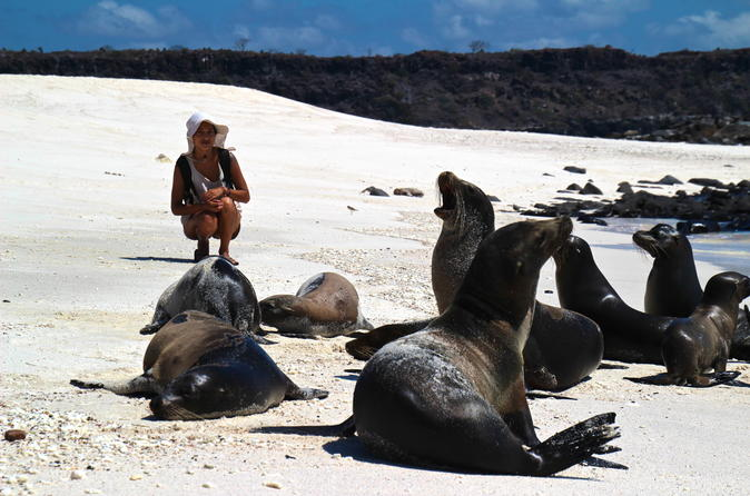 Galapagos Islands Land-Based Eco Adventure with Hiking and Snorkeling 5D/4N