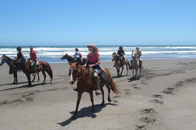 Horseback Ride on Beach and Sand Dunes