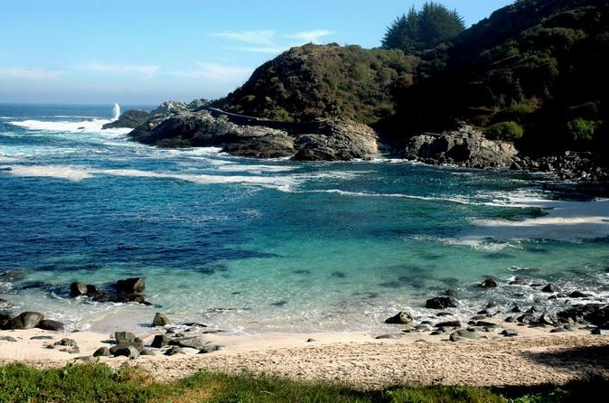 Pacific Treasures Private Tour: Pirate Cave and Penguin Island Cachagua