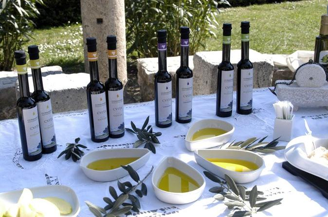Olive Oil and Wine Tasting from Split