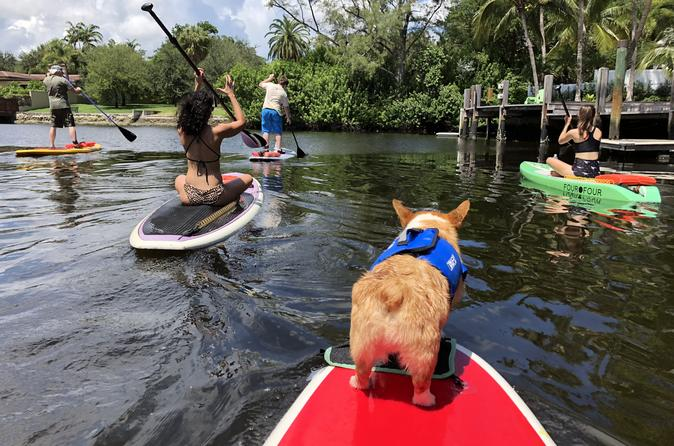 SUP PUP Paddleboard Tour