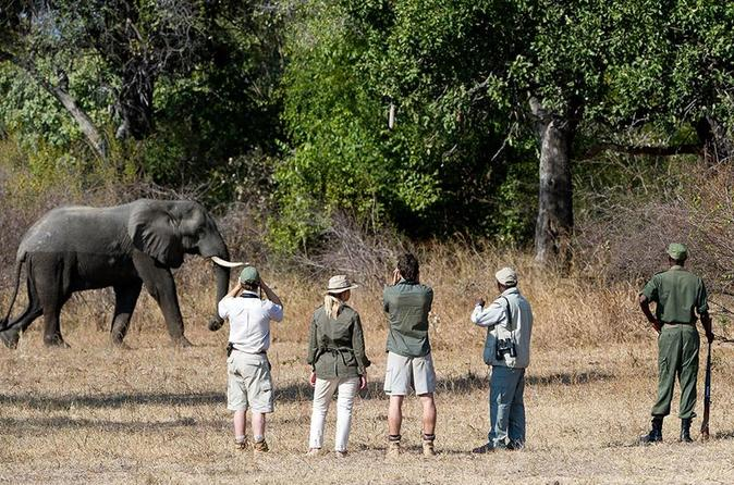 13 DAYS LOWER ZAMBEZI, KAFUE AND SOUTH LUANGWA NATIONAL PARK SAFARI