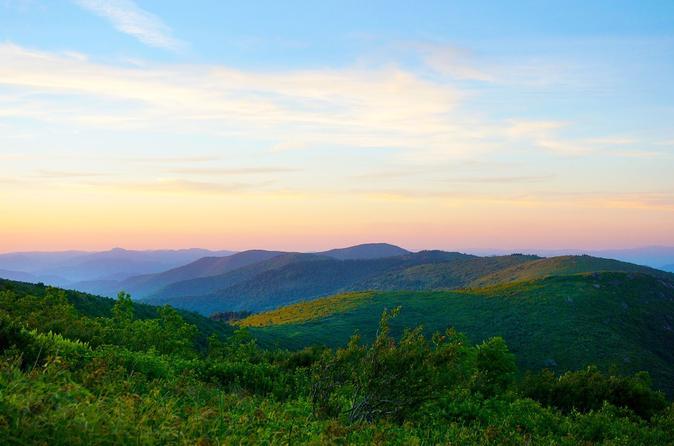 Nature Center Asheville Field Trip