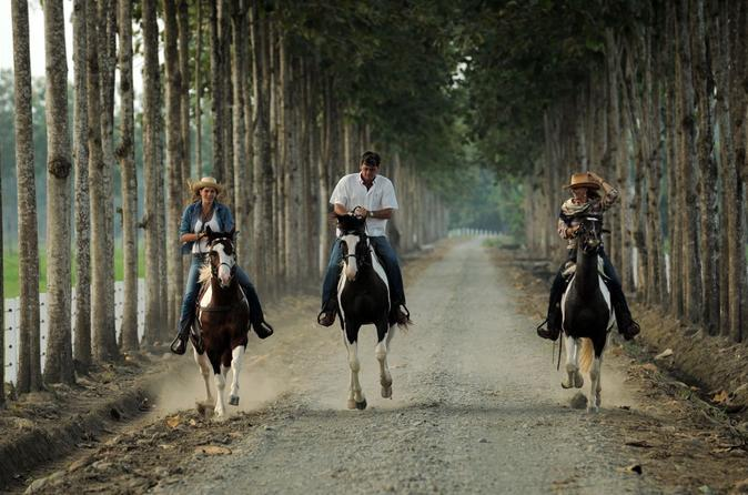 Day trip to hacienda la danesa with horseback riding and lunch in guayaquil 300880