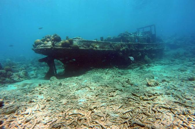 Discover Scuba Diving in Curacao