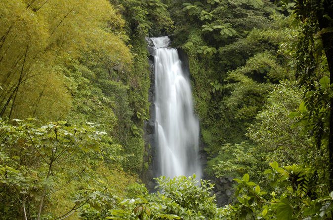 Dominica Full Day Round Island Tour