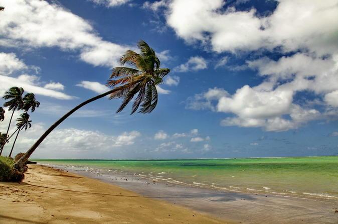 Atlantic Route, travel through the most beautiful Brazilian Northeast beaches