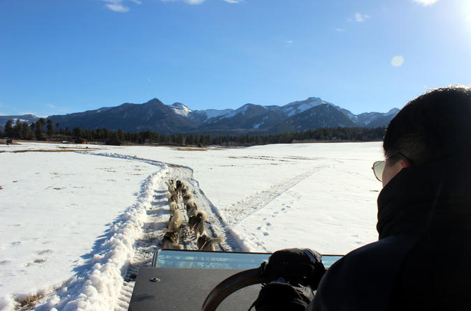 Dogsledding adventure on wheels in pagosa springs 308491
