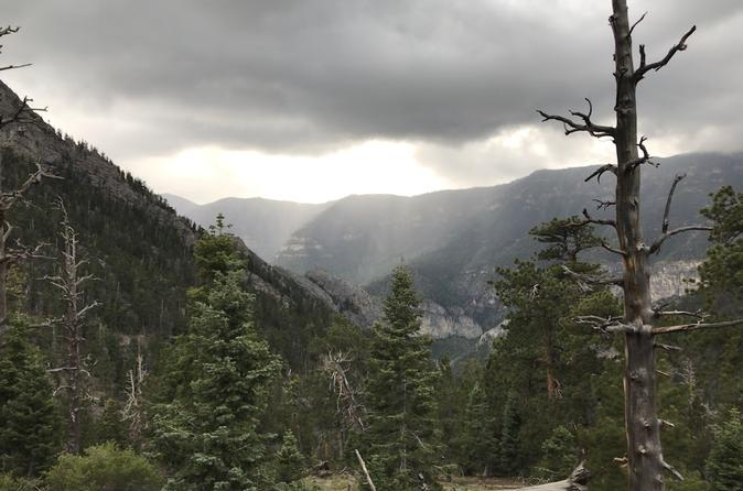 Mount Charleston Wilderness Area Private Limo-Bus Tour