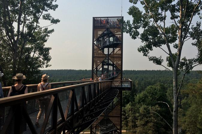 Day Trip to Anyksciai National Park