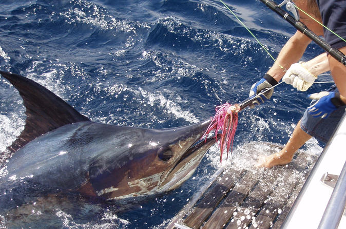 Big game fishing from vilamoura in quarteira 453092
