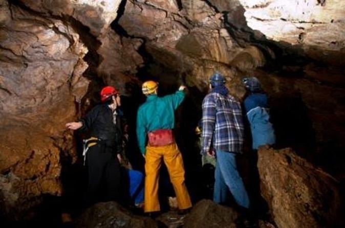 Multi cave adventure tour in qualicum beach 204578