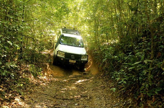Bild Barron Gorge und Kuranda-Nationalpark– halbtägiges Regenwald- und Wasserfall-Abenteuer im Allradfahrzeug ab Cairns (Kreuzfahrt-Ausflug)