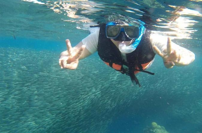 Moalboal Pescador Island Hopping Private Day Tour