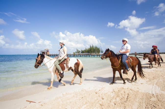 Roatan combo tour jungle horseback riding and beach break in coxen hole 214862