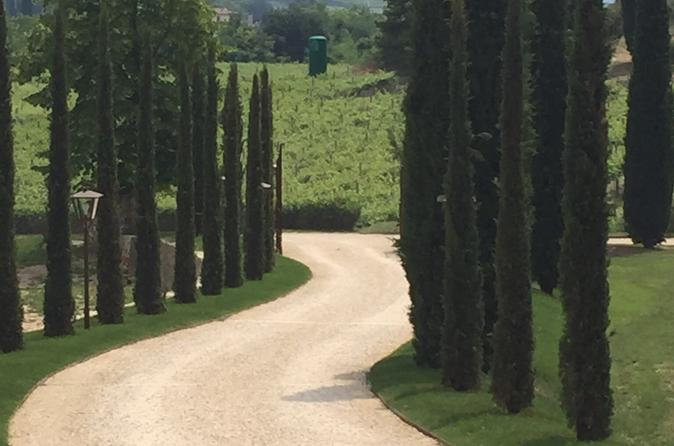 Venice Countryside Tour with Visit to Valpolicella, Wine Tasting and Lunch