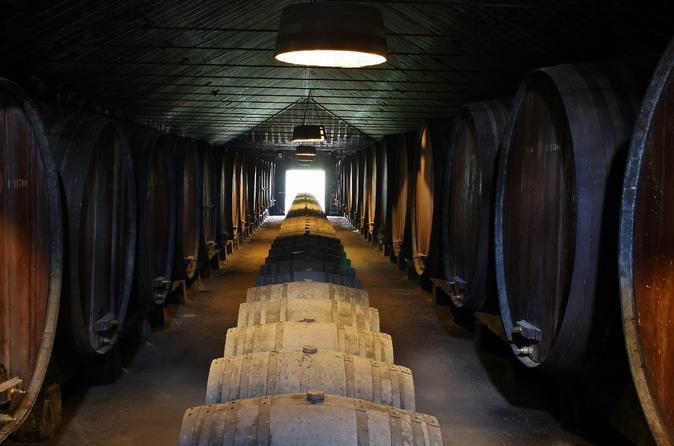 Excursão particular com degustação de vinhos em Lisboa pela região de Setúbal