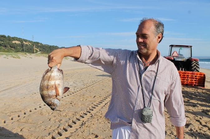Full-Day Tour from Lisbon with Traditional Fisherman's Lunch in Setúbal