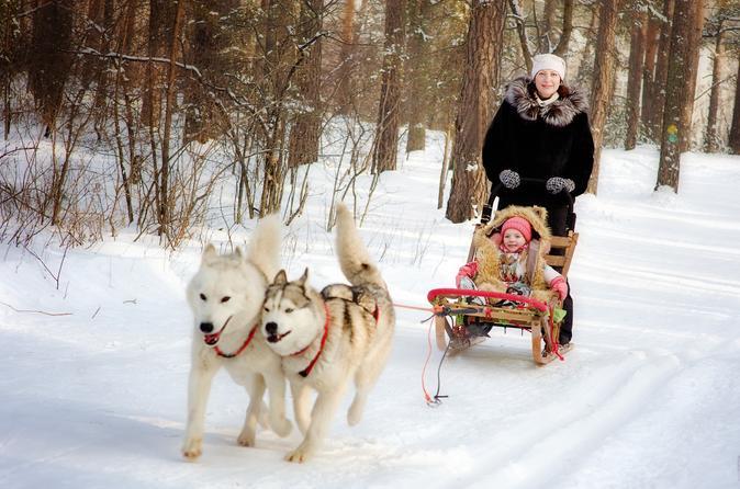 St. Petersburg Winter Peterhof Tour and Malamute Sledding