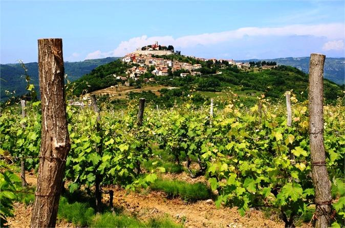 7 day istrian wine trail tour from pula in pula 263759
