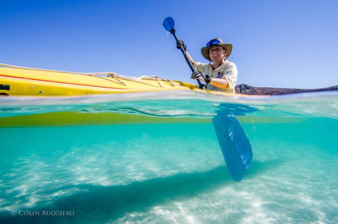Kayaking in the Sea of Cortez from Todos Santos