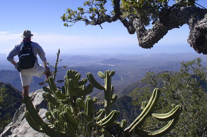 Sierra de la laguna biosphere reserve hike from todos santos in todos santos 204824