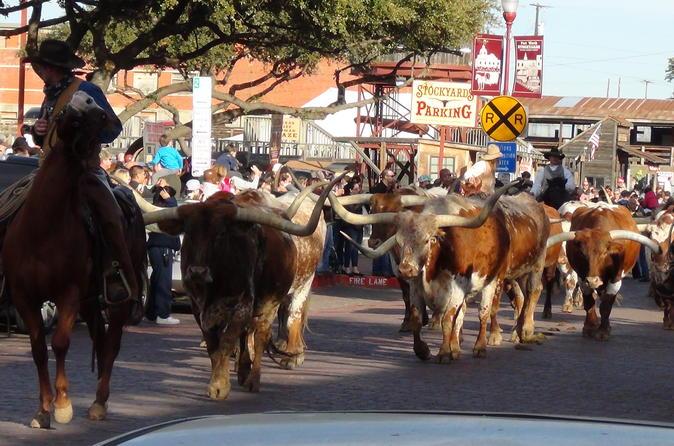 Excursão histórica de meio dia guiada pelo melhor do Fort Worth