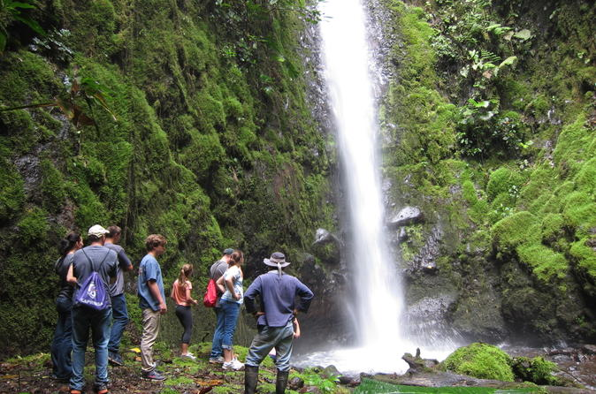 Private Tour: Horseback Riding Waterfall and Rainforest Hike Adventure in El Castillo