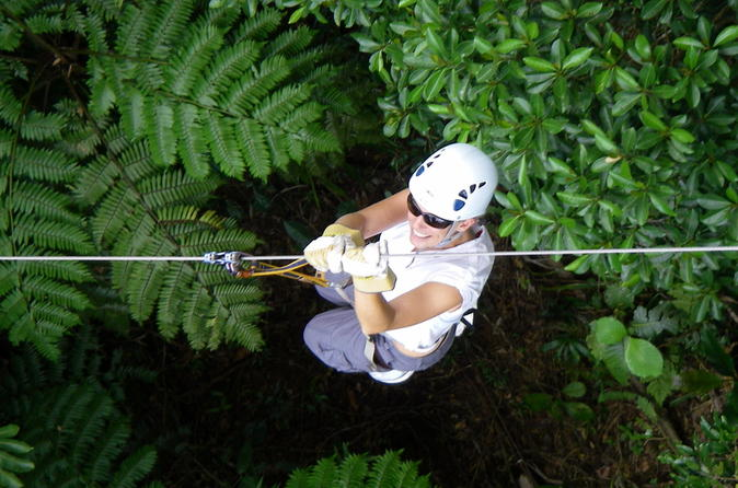Half day fiji zip line tour at pacific harbour in pacific harbour 283347