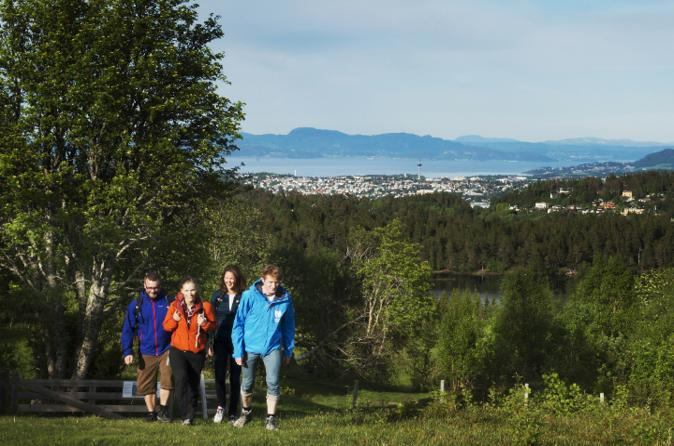 Mid-Norway Nature Tour from Trondheim