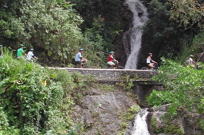 Private Bicycle Tour of Jamaica's Blue Mountains from Montego Bay