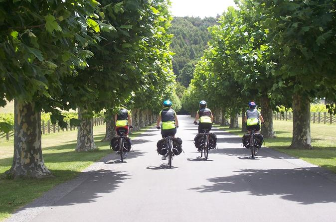 Half day self guided hawkes bay coastline and wineries cycling tour in napier 402521