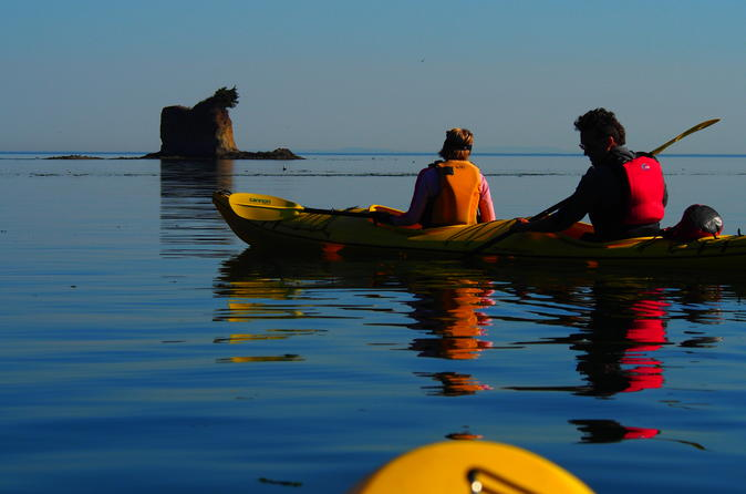 Sea kayak half day trip near olympic national park in port angeles 290544