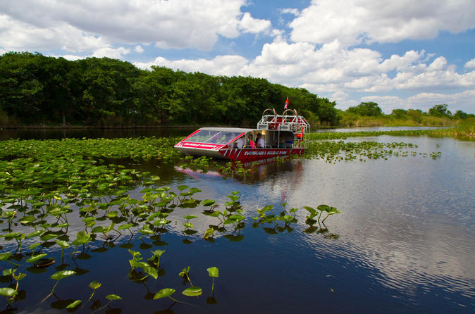 Everglades Air Boat Ride and Alligator Tour from Miami or Fort Lauderdale Port or Airport